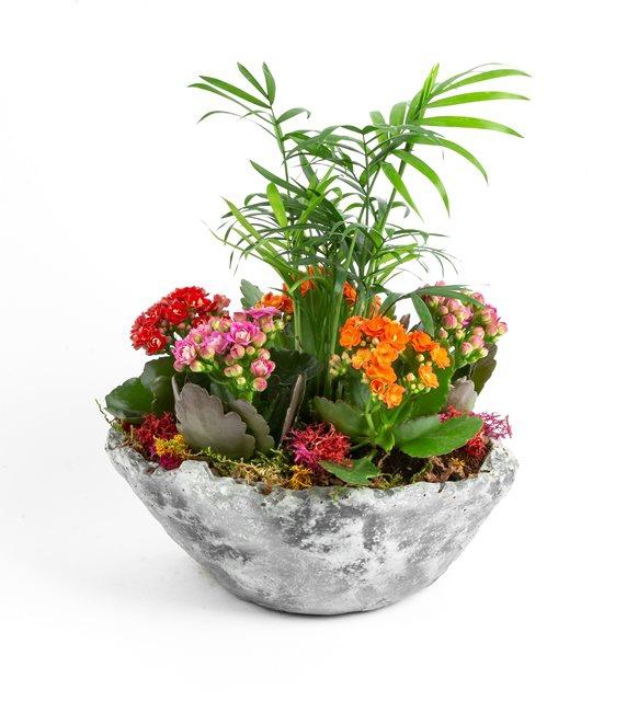 Çiçek 02